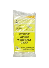 Sticky Whitefly Trap 5/Pack