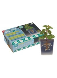 Planters Pride Gel 2 Root 6/Pack