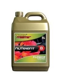 Gold Flower B   5 Liter