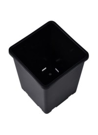 Rose Bucket Black 7.6 in x 7.6 in x 9.7 in