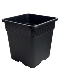 Black Square Pot  1/2 Gallon