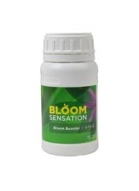 Bloom Sensation   250 ml