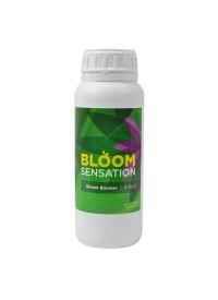 Bloom Sensation   500 ml