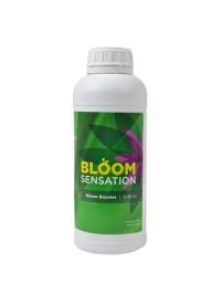 Bloom Sensation  1 Liter