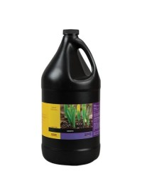 BCuzz Growth Gallon