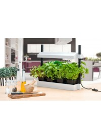 SunBlaster Grow Light Garden