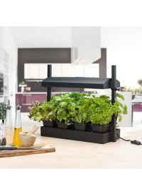 SunBlaster Micro GrowLight Garden